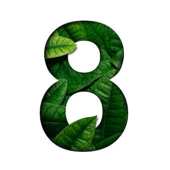 リアルアライブで作られたlefasナンバー8には、貴重な紙でカットされた数字の形があります。 leafsフォント。