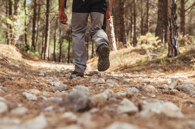 Vista della gamba dell'uomo nella foresta