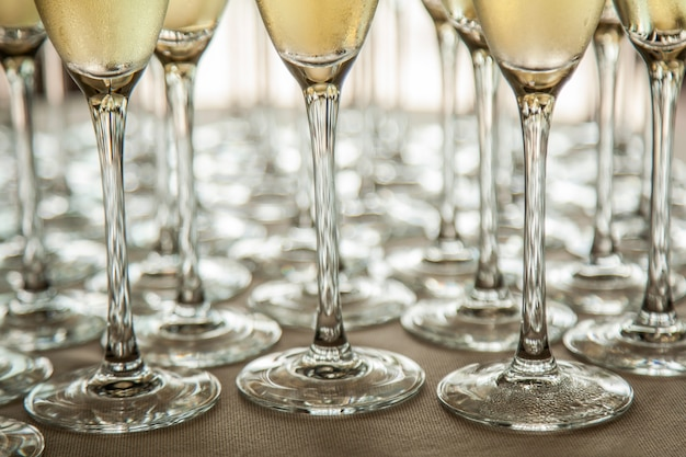 Legs of glasses with cold champagne, close-ups
