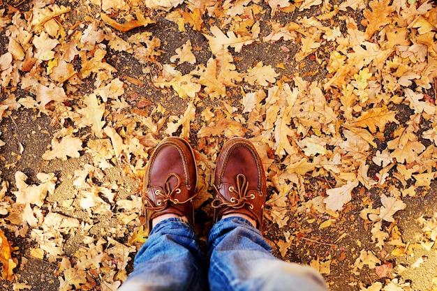 가 배경에 갈색 신발에 다리 나뭇잎 근접 촬영.