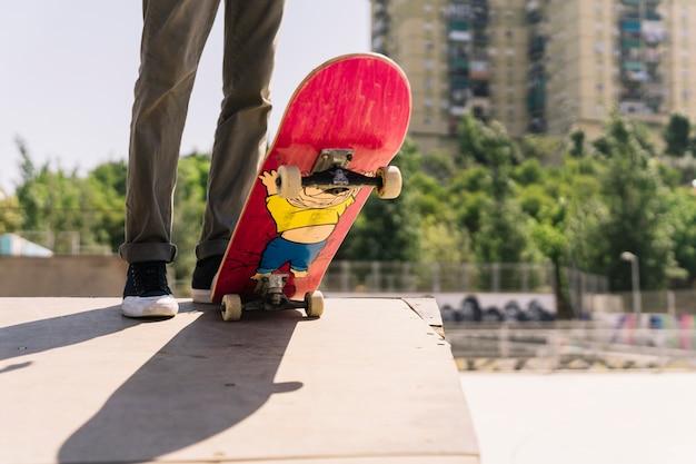 Legs and skateboard