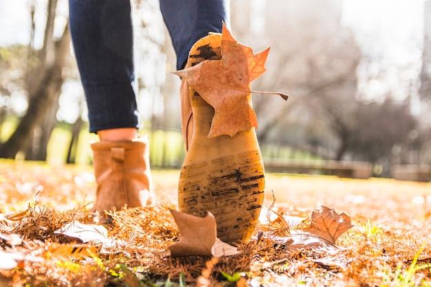 靴底に葉がある脚