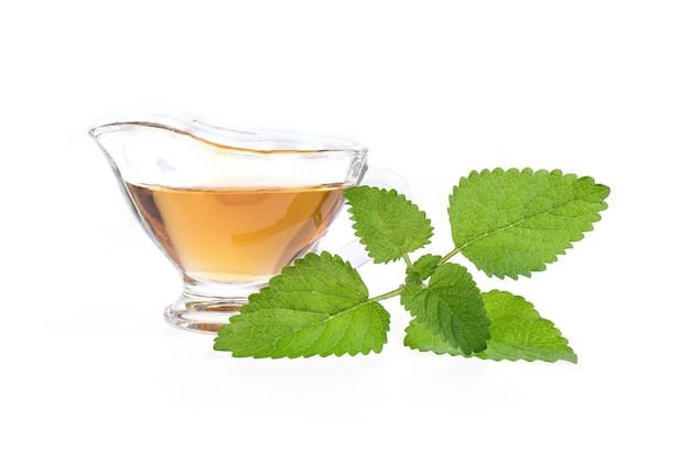 Lemon balm green leaf and tea isolated on white surface