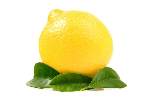 레몬 가까이 절연 세부 사항