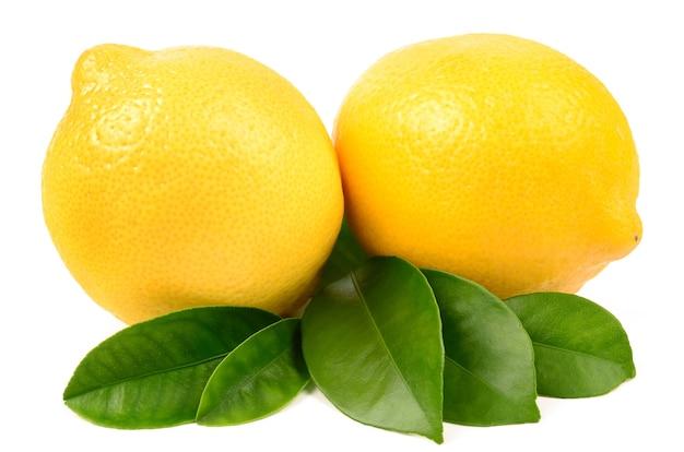 흰색에 레몬