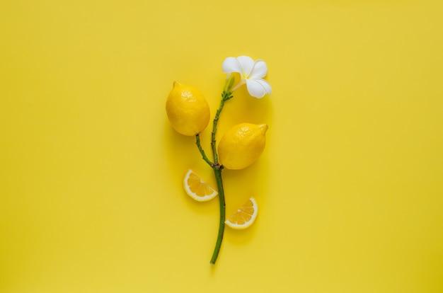 黄色の背景に花を持つフランジパニの木のレモン。最小限の夏のコンセプト。