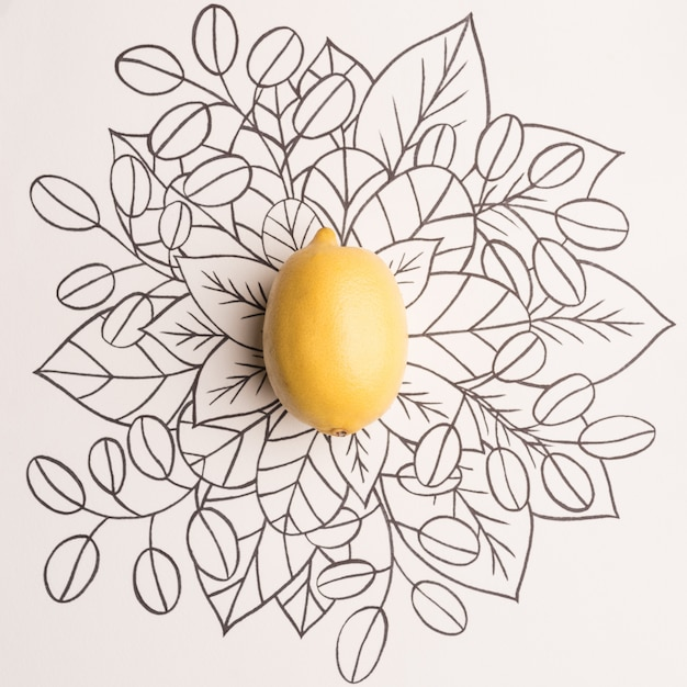 Lemon over outline floral background