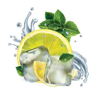 레몬 조각, 민트 잎, 얼음 조각과 물 얼룩