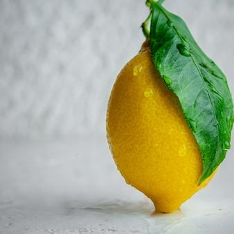 織り目加工の白い背景の上の葉の側面図とレモン