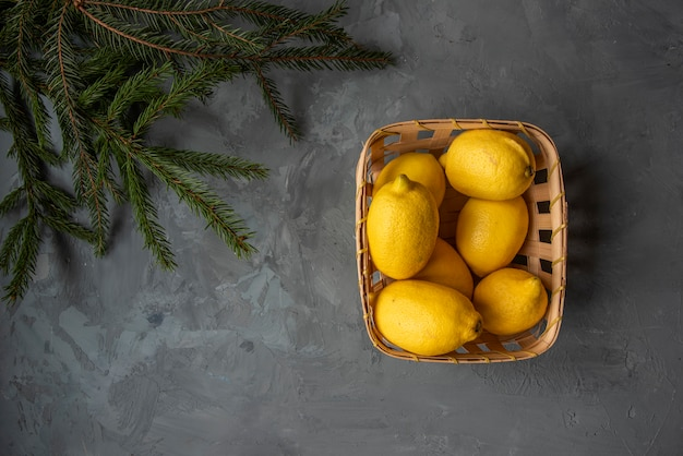 Lemons in a basket under a christmas tree branch. top view
