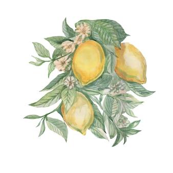 葉と花のタイルマジョリカプロヴァンスとレモンの果実の枝。 Premium写真