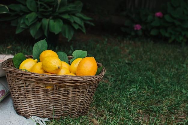緑を背景にバスケットに入ったレモンレモンジュースの果物と柑橘類の広告