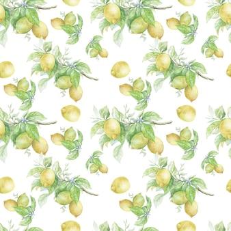 果物と葉の手描きの水彩イラストと枝のレモン