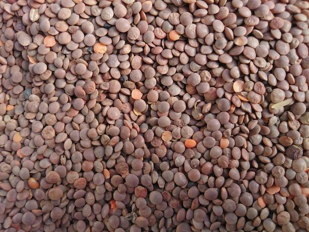 Lentils background texture