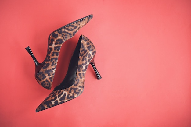 Leopard print shoes high heels on red background, top view