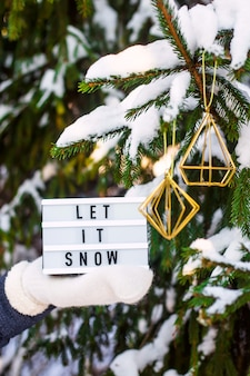 Пусть идет снег это написано на декоративной лампе в руке женщины