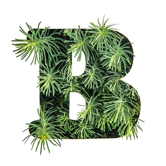 The letter b of the english alphabet from green grass