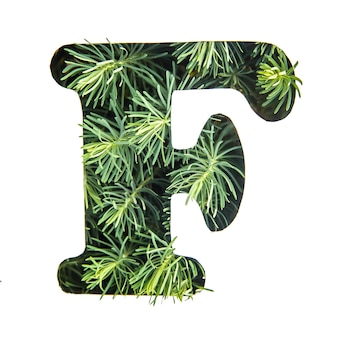 The letter f of the english alphabet from green grass
