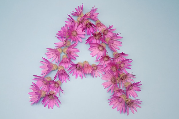 Letter a laid out of pink flowers on a white background