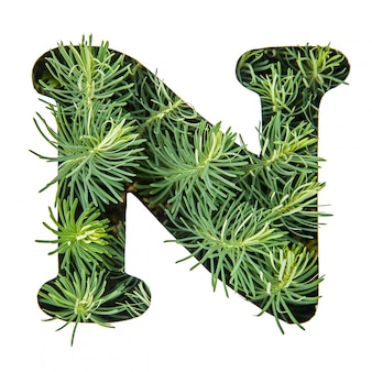 The letter n of the english alphabet from green grass
