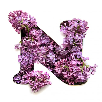 The letter n of the english alphabet from lilac