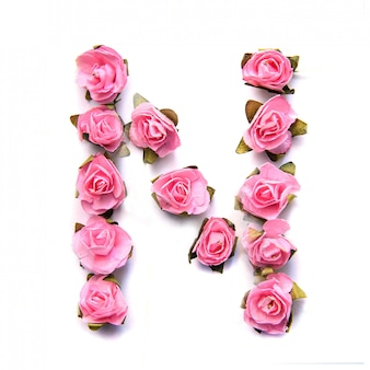 Letter n of english alphabet of pink roses on white surface