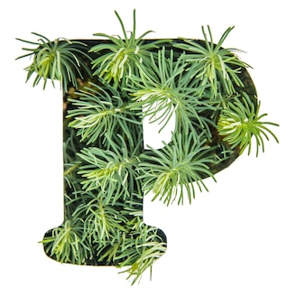 The letter p of the english alphabet from green grass