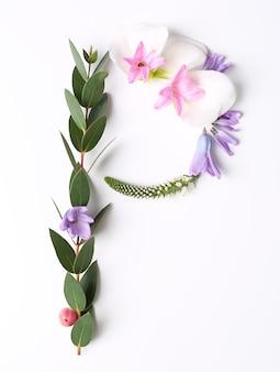 白い背景の上に花とハーブで作られた文字p