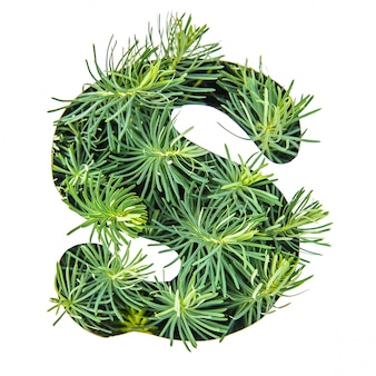 The letter s of the english alphabet from green grass
