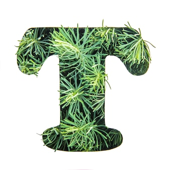 The letter t of the english alphabet from green grass