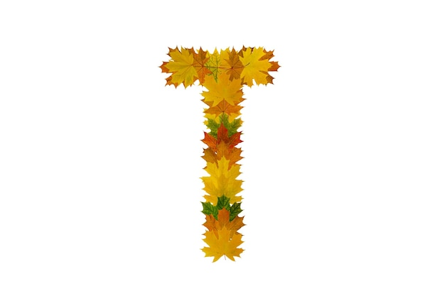 Буква t из осенних кленовых листьев. алфавит из зеленых, желтых и оранжевых листьев.