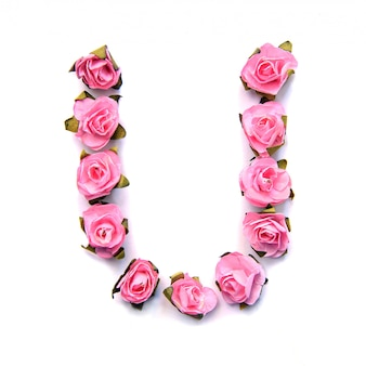 Letter u of english alphabet of pink roses on white surface