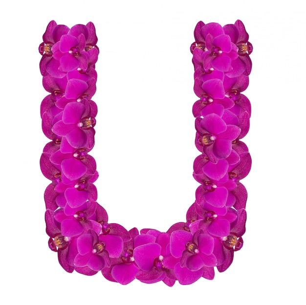 Letter u made of pink flower petals