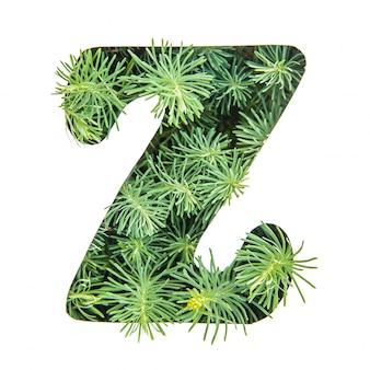 The letter z of the english alphabet from green grass