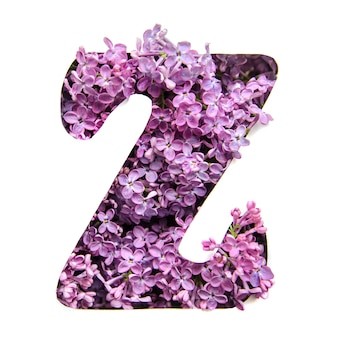 The letter z of the english alphabet from lilac