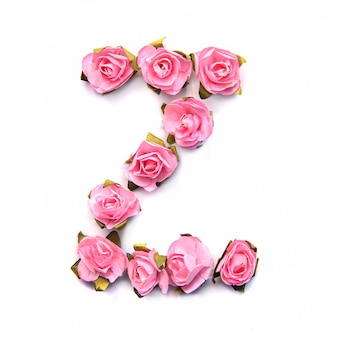 Letter z of english alphabet of pink roses on white surface