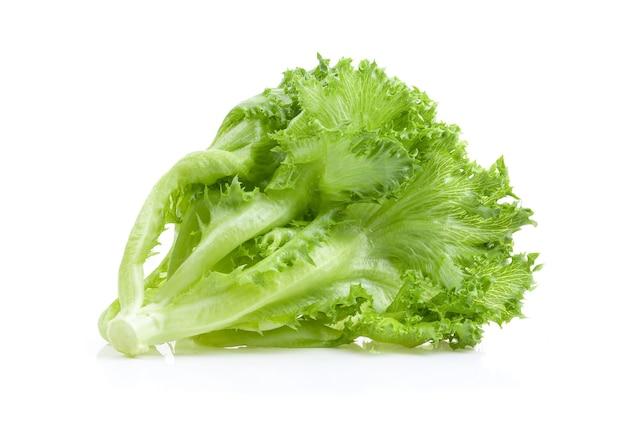 Листья салата салата на белом фоне