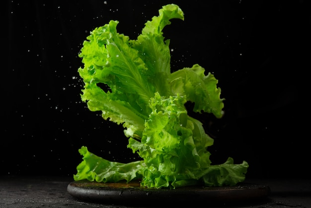 Lettuce on a table on a black background