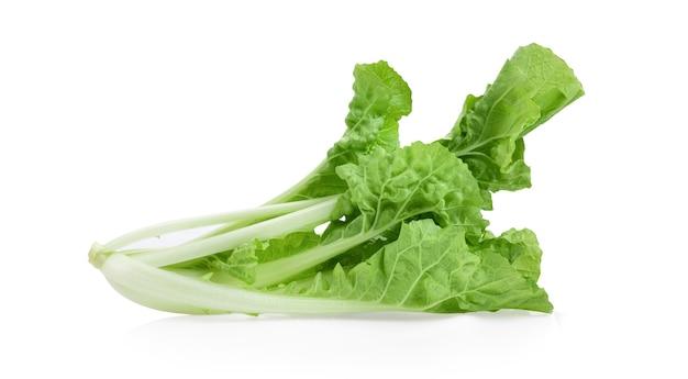 白い背景で隔離のレタス野菜