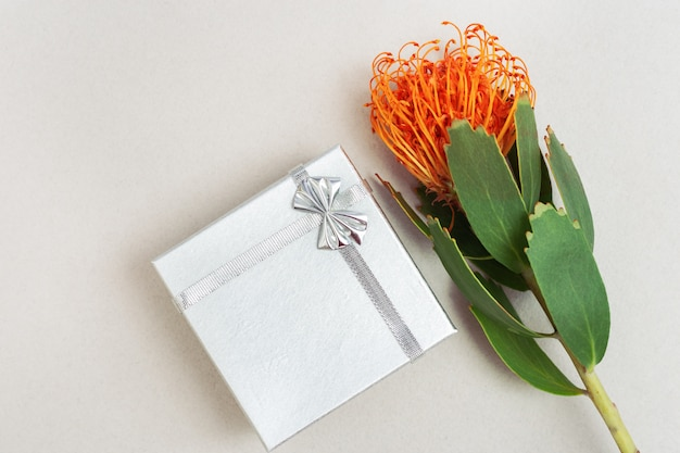 Leucospermum flower and silver gift box on light paper surface