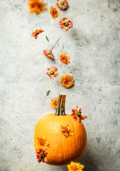 Levitating orange pumpkin and chrysanthemum