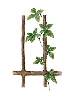 白に描かれた緑の葉の水彩画とリアナの枝緑のつる植物ツタ