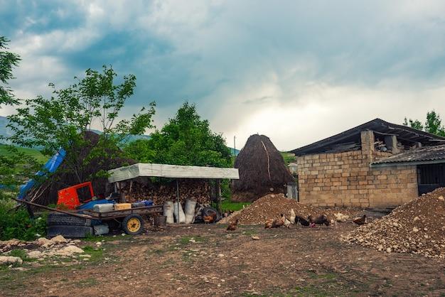 Жизнь в деревне, сельский двор