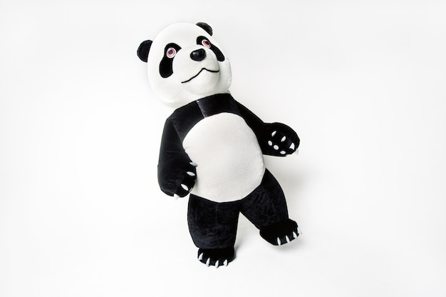 Life-size panda doll with a man inside on a white isolated background.