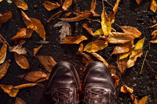 Стиль жизни. черные кроссовки на осенней дождливой дороге провалившихся веток. вид сверху