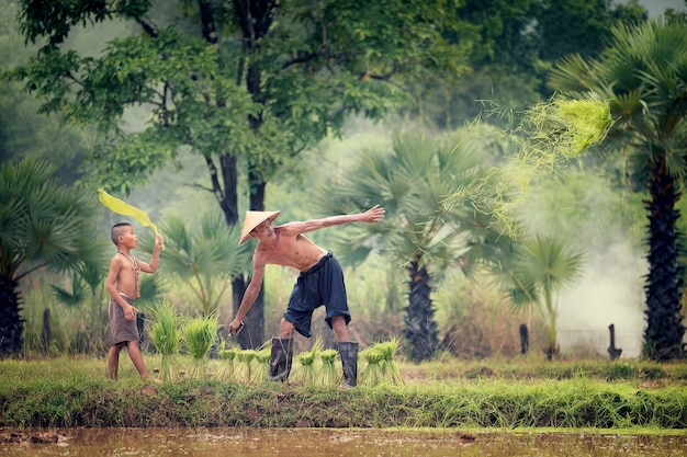 Lifestyle of southeast asian people in the field countryside thailand, farther and son