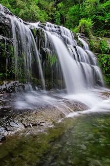 オーストラリア、タスマニアのミッドランド地方のリフィーフォールズ州保全区。