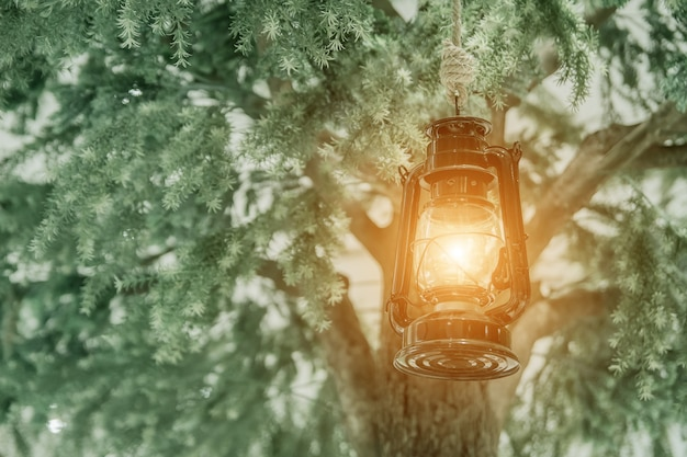 Light of the ancient lamp