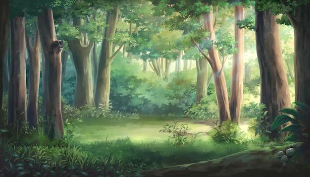 光と森のイラスト
