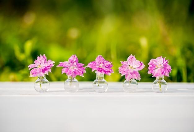光と影。ヘリクリサムの紫色の花、村の夏の夜、暖かく晴れた夕日、屋外の影。ガラスフラスコ内のバタニカの美しい植物